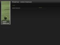 u16-team.de Webseite Vorschau