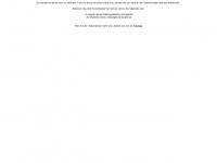 unternehmensberatung-bmk-beratung.de Thumbnail