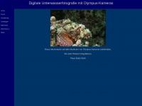 unterwasser24.de Thumbnail