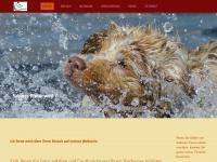 hundetreff-russee.de