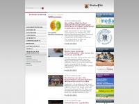 ilf.bildung-rp.de