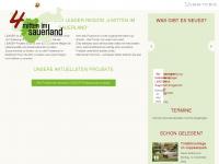 leader-sauerland.de