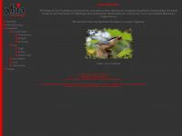 xhia-fotodesign.de Webseite Vorschau