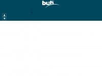 bui-hinsche.com Webseite Vorschau