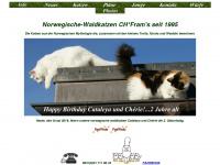 Norwegische-waldkatzen.ch