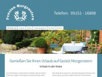 pension-morgenstern-hameln.com