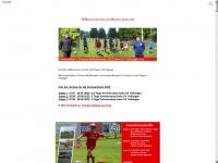 Profiteam-sport.de
