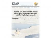 zukunft-afghanistan.de Thumbnail