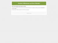 kita-gaxel.de Webseite Vorschau