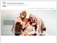 Orgelsommer.de