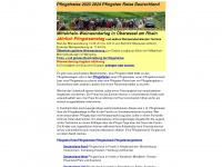 pfingstreise.de
