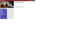 zuvielsalz.de Webseite Vorschau