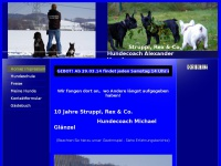 hundecoach-alexander-vogel.de Thumbnail