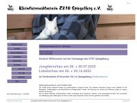 z310.info Webseite Vorschau