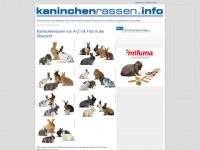 kaninchenrassen.info