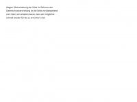 kinder-sicher.de Webseite Vorschau