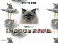 phatys.ch Webseite Vorschau