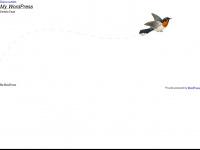 Barttrimmer-test.at