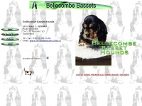 bassethounds.ch
