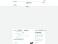 icv-controlling.com