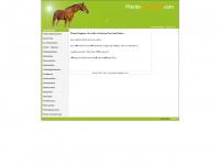 pferde-ratgeber.com