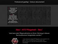 kfz-pflegeheft.de