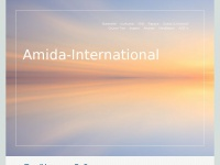 amida-international.com