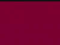 stuenkel.de
