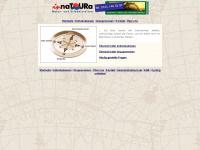 Rad-reisen-weltweit.de
