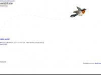 vers24.info