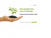 2ndhandbikes.de Webseite Vorschau