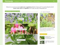 plantopedia.com