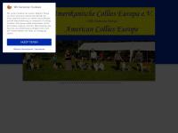 amerikanische-collies-europa.de Webseite Vorschau