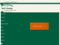 hof-lüning.de
