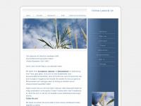 Online-lektorat24.de