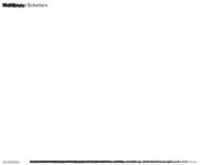 janhostettler.ch Webseite Vorschau