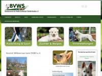 bvws.info Thumbnail