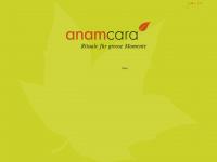 anamcara.info Webseite Vorschau