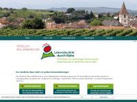 lqn-spes.de Webseite Vorschau