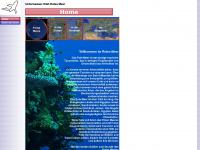 unterwasser-welt-rotesmeer.de Thumbnail