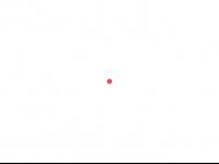 kisu-cottbus.de Webseite Vorschau