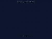 Dampfbuegel-station-test.de