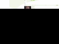 kiek-in-nms.de Webseite Vorschau