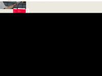 loidl-consulting.at Webseite Vorschau