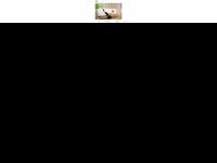 physiotherapie-pilates.at Webseite Vorschau