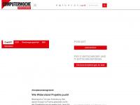 1cms.io Webseite Vorschau