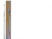 Thv-handball.de