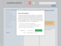 fuehrerscheinfix.de Webseite Vorschau