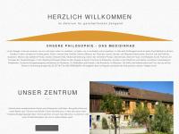 zgz-darstadt.de Webseite Vorschau