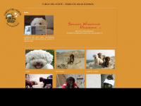 perro-de-agua-espanol.com